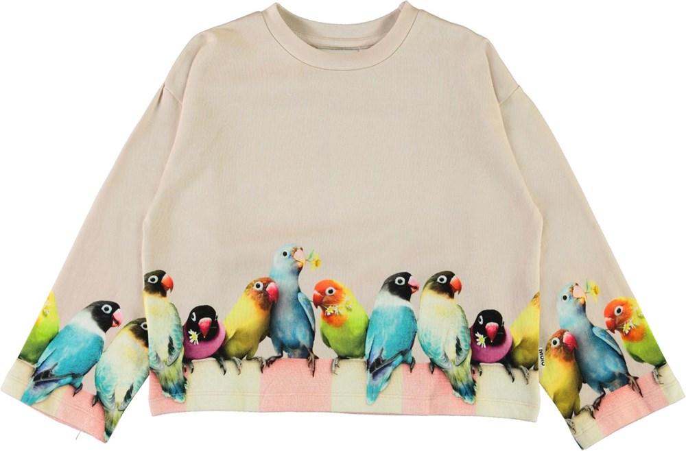 Mikko - Love Birds Big - Økologisk rosa sweatshirt med fugle