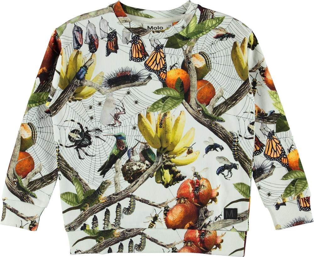 Madsim - Living Nature - Madism Sweater