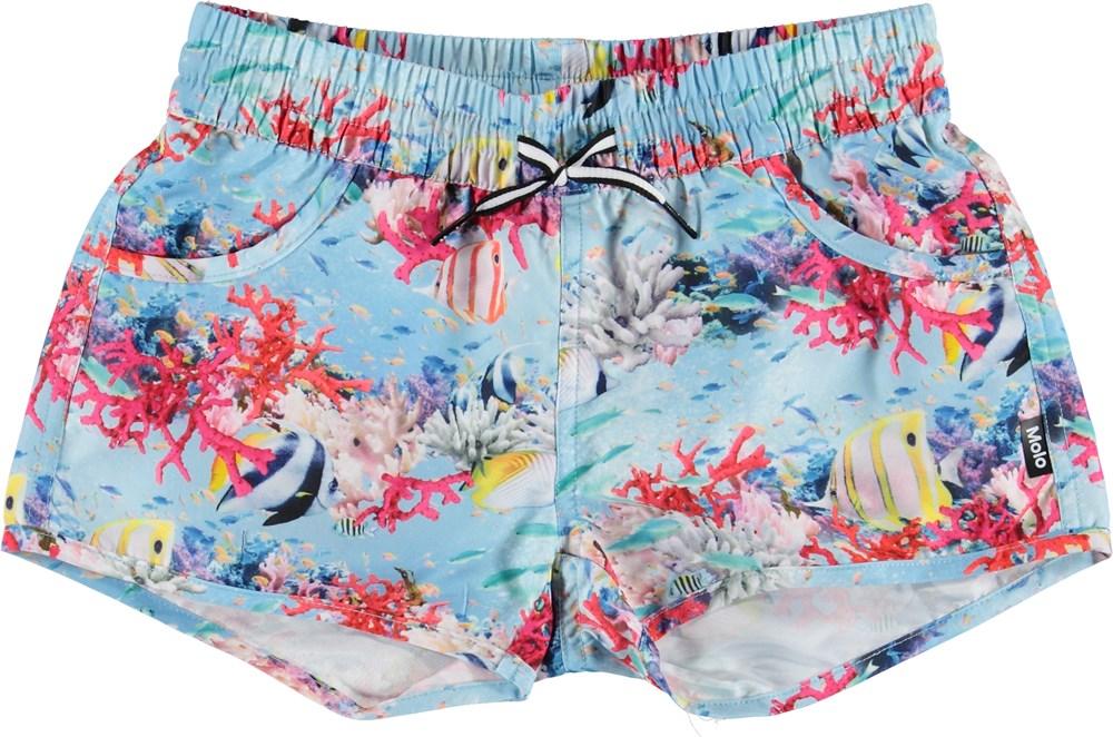 Nalika - Coral Stripe - UV swim trunks with fish and coral
