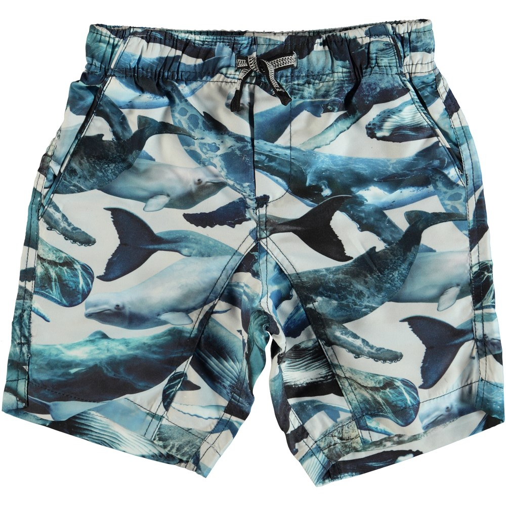 Nario - Whales - Swim trunks with back pocket