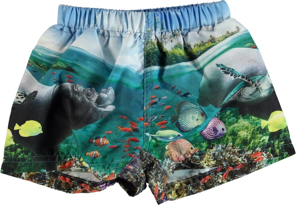 Newton - Imagine - Swim trunks