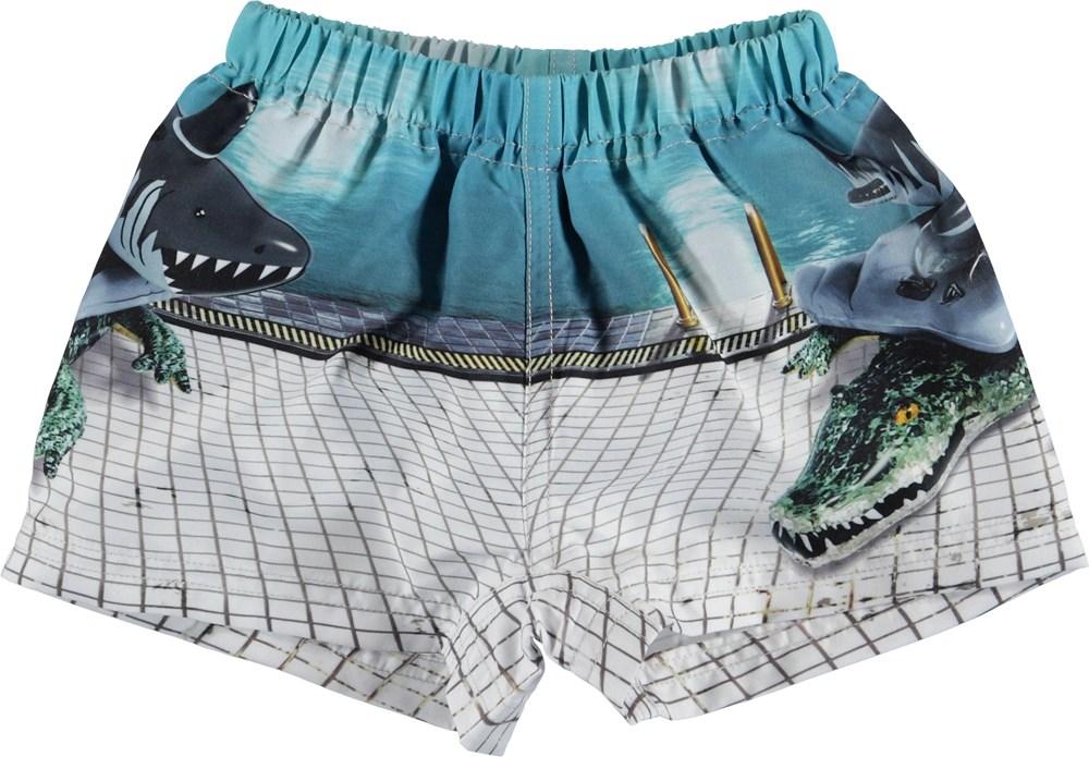 Newton - Pool Side - UV swim trunks with animal floats