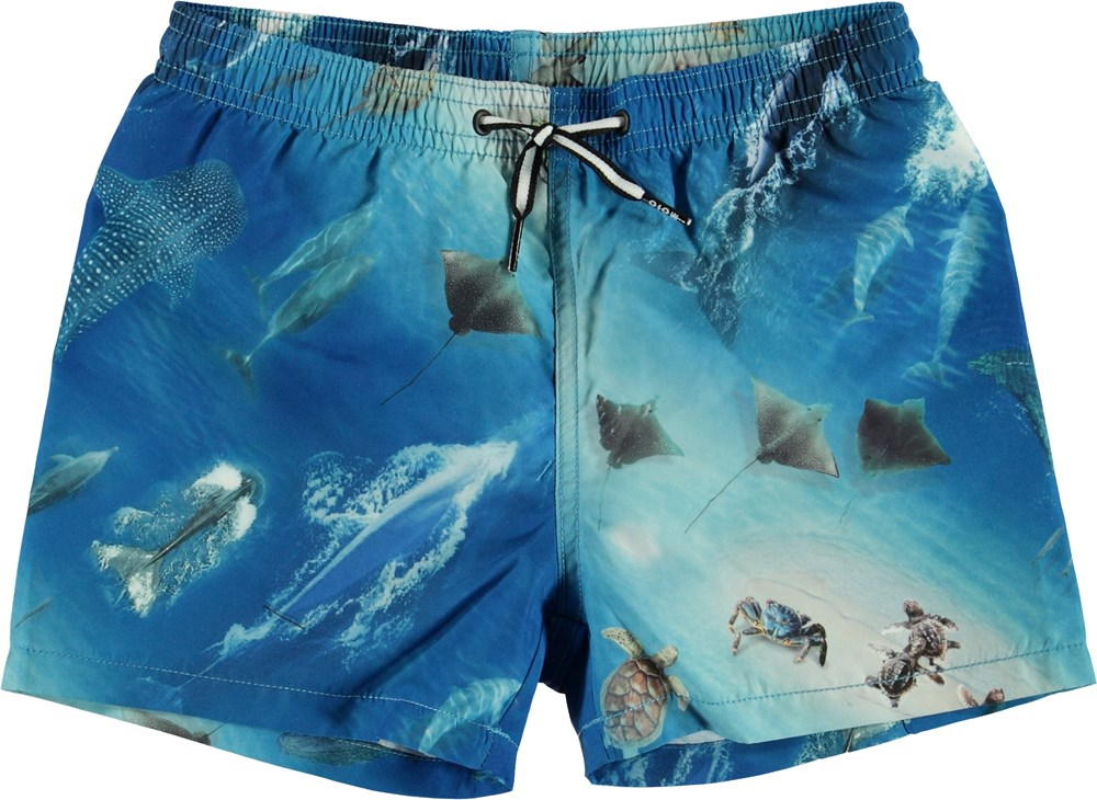 Trascendencia intercambiar nombre de la marca  Niko - Above Ocean - UV swim trunks with ocean print - Molo