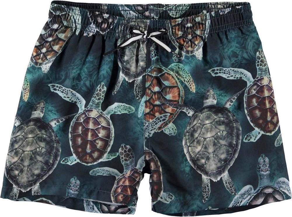 Niko - Sea Turtles - UV swim trunks with turtles