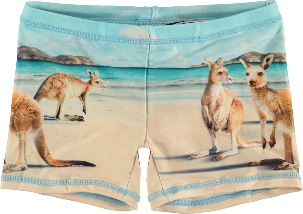 Norton Placed - Kangaroos - UV swim trunks with kangaroo