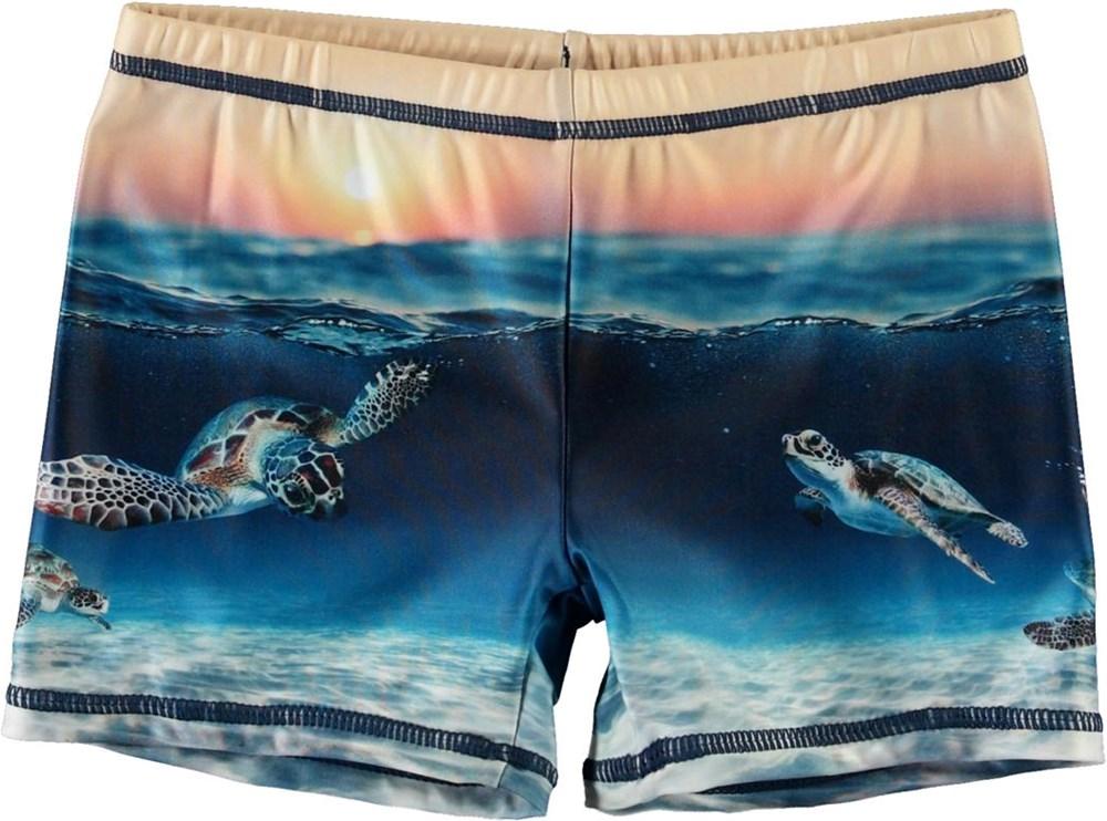 Norton Placed - Sea Turtle Sunset - Short UV swim trunks with turtles