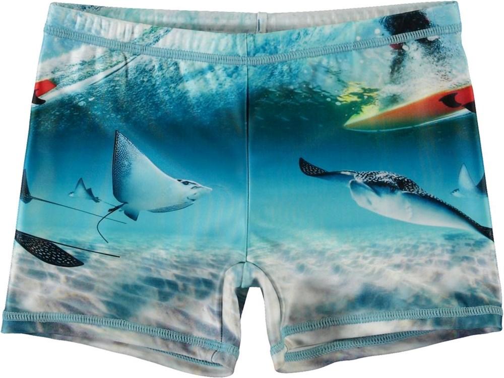 Norton Placed - Sting Ray - Short UV swim trunks with stingrays
