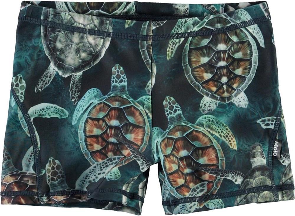 Norton - Sea Turtles - Short UV swim trunks with turtles
